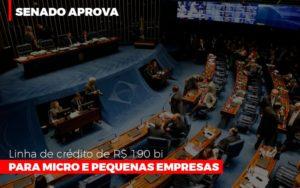 Senado Aprova Linha De Crédito De R$190 Bi Para Micro E Pequenas Empresas Notícias E Artigos Contábeis - Contabilidade no Piauí | Império Contábil