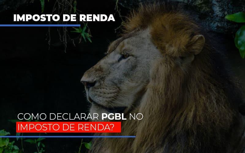 Ir2020:como Declarar Pgbl No Imposto De Renda Notícias E Artigos Contábeis - Contabilidade no Piauí | Império Contábil
